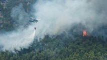 Hundreds of firefighters with aircraft combat blazes near Athens