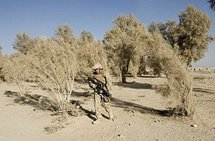 Lawmakers caution Obama against Afghan troops