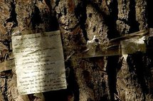 A poem dedicated to Lorca on a tree in the park where the poet is believed to be buried