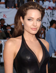 Jolie wants to meet Bosnian victims, clear misunderstanding