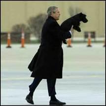Bush: From presidential pampering to pet poop