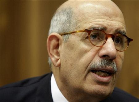 ElBaradei says not to run for Egypt presidency
