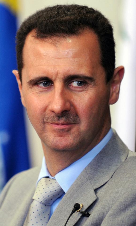 Source: Wikipedia, originally http://agenciabrasil.ebc.com.br/galeria/2010-07-01/presidente-da-republica-arabe-siria-visita-congresso-nacional?foto=30062010-300610JC5128