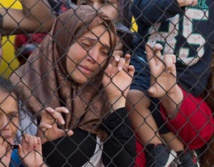 Germany reinstates border controls to slow refugee influx