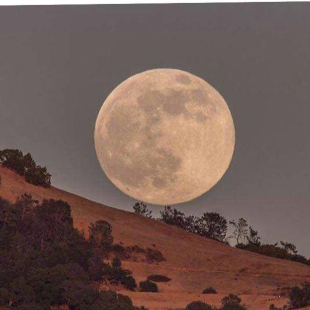 World looks up to gaze at extra bright 'supermoon'