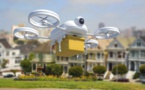 Drones overfly Champs-Elysee in 'magical' Paris festival