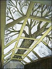 Tree installation honours Darwin