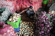 Half the planet could be hit by food crisis by 2100: study