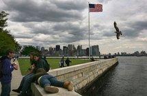 A view of Manhattan from Ellis Island