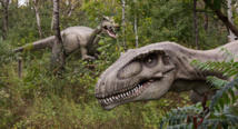 Vandals damage 115-million-year-old dinosaur footprint near Melbourne