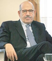 ElBaradei says government behind daughter's swimsuit photos