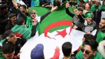 VW suspends production in Algeria amid political crisis