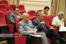 Egypt constitution ready by end November: panel
