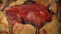 Spain prehistoric cave art gems reopen to lucky few