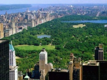 What, no more buggy rides in NY's Central Park?