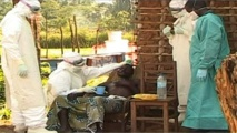 Ebola sparks states of emergency across west Africa