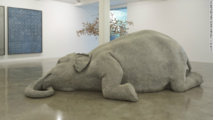 Indian elephant gets her own art exhibition