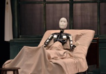 Kafka's The Metamorphosis, robot style