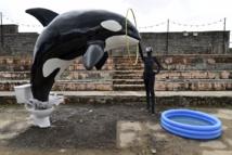 Artist Banksy opens sinister theme park at British seaside