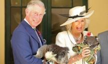 Prince Charles meets Australian war widow