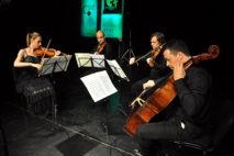 More orchestras join Google classical project