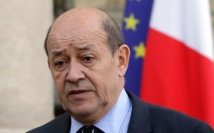 War on IS 'starting to pay off': French minister