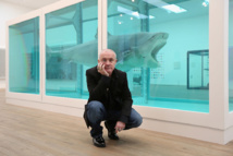 Damien Hirst artworks leaked formaldehyde gas: study