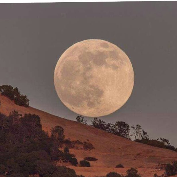 World looks up to gaze at extra bright 'supermoon'
