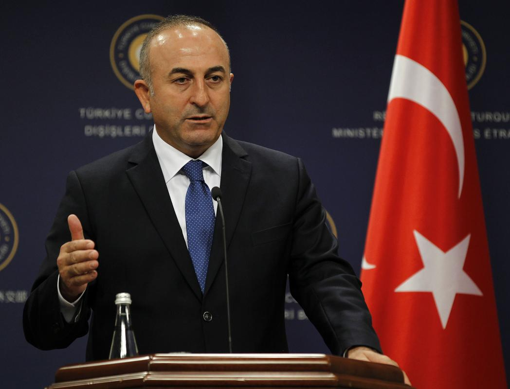 Cavusoglu: Syrian government's Idlib offensive jeopardizes peace
