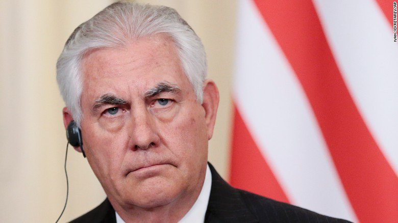 Tillerson to Egypt: US will be 'steadfast partner' in anti-IS fight