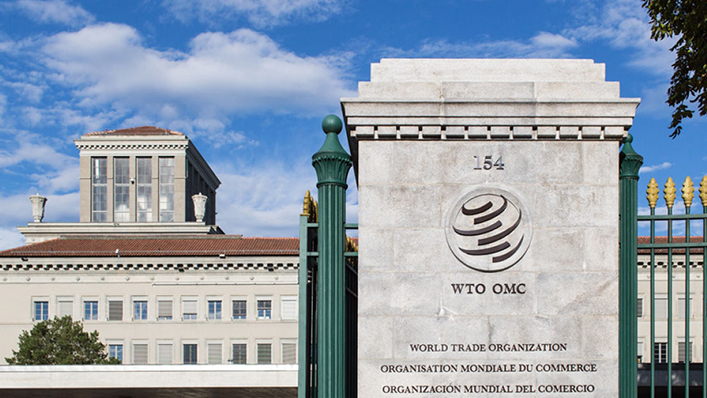 Troubled WTO starts candidate hearings for top trade job