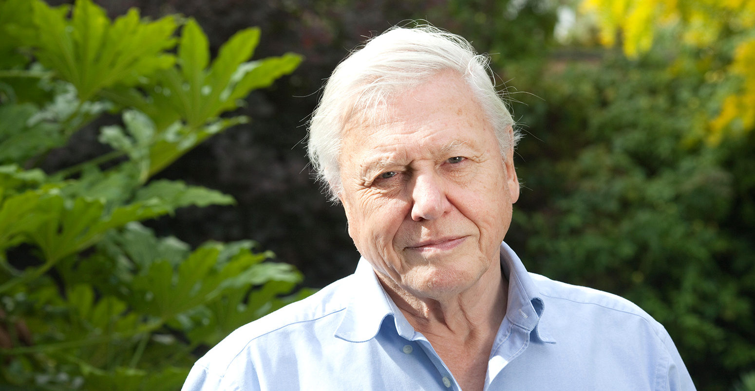 David Attenborough joins Instagram to help 'world in trouble'