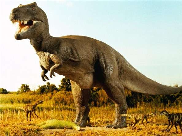 Dinosaur metabolism: not too hot, not too cold