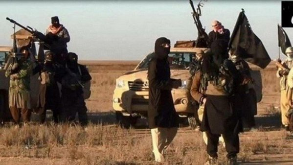 IS has lost nearly half the area it once claimed in Iraq: Pentagon