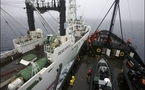 Japanese whalers get reprieve as protest ship refuels