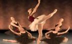 Bolshoi tries to quell scandal after halting 'Nureyev' premiere