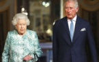 Prince Charles opens new coronavirus hospital by video link
