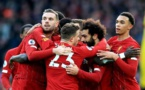 Record-breaking Liverpool revel in Premier League success
