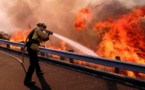 California fire caused by gender reveal party pyrotechnics